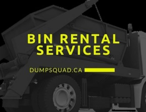 Dumpster Rental Important Things That You Need To Consider
